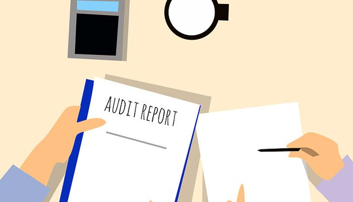 External Auditing as a Career