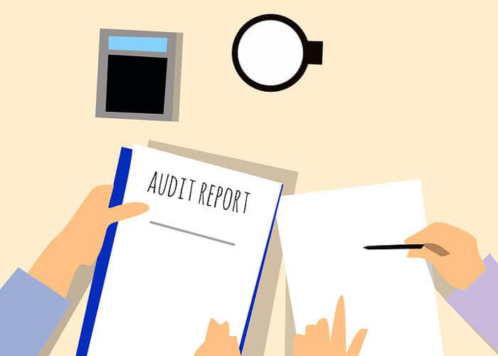 External Auditing as a Career